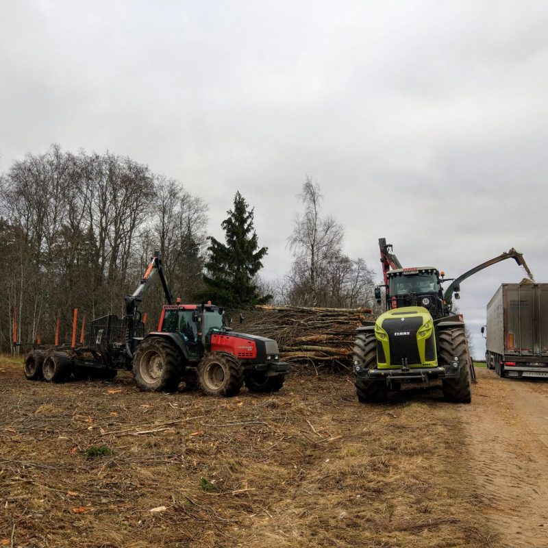 Manufacture of wood chips
