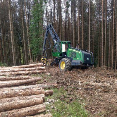 Kahjustusega kuusiku lõikus Saksamaal