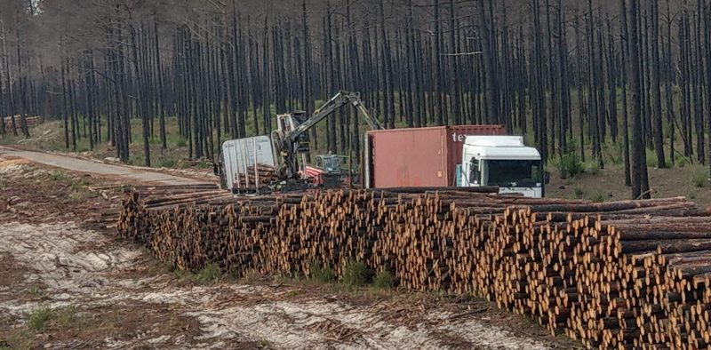 Loading the logs into a container